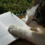 「読んだら忘れない読書術」書籍レビュー